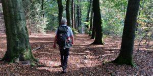wandelen Frans Bergmans